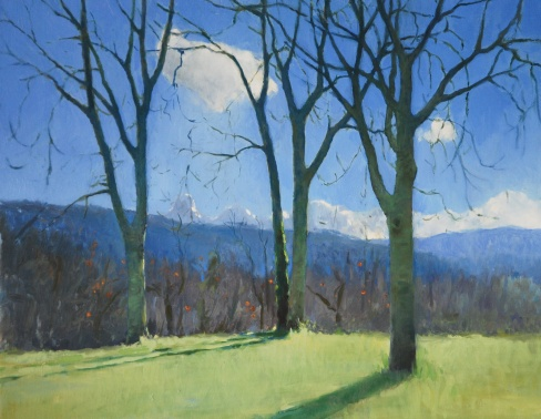 Winter Trees, 40cm x 50cm, oil on linen